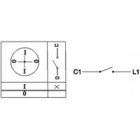 Пакетный выключатель ПВ1-16 исп.1 1П 16А 220В IP00 TDM