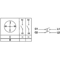 Пакетный выключатель ПВ2-40 исп.3 2П 40А 220В IP00 TDM