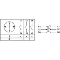 Пакетный выключатель ПВ3-100 исп.1 3П 100А 220В IP00 TDM