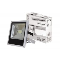 Прожектор светодиодный СДО30-2-Н 30 Вт, 6500 К, серый